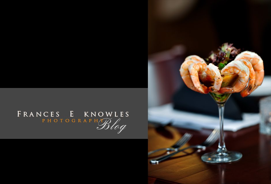 Frances Knowles Photography Blog