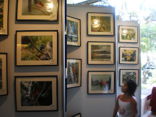 1ST ASIAN BIRD FAIR 2010 - DAVAO