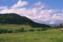 Black Hills of Wyoming