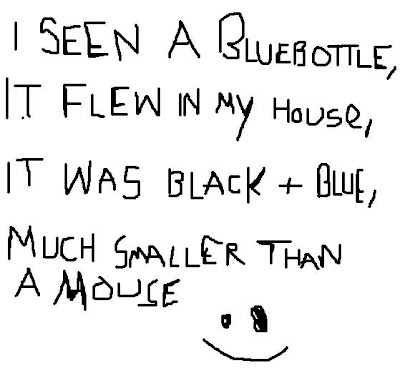 I seen a bluebottle, It flew in my house, It was black and blue, Smaller than a mouse.