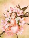Paz e Harmonia para todos!!! Eu te adoro 2012!!!