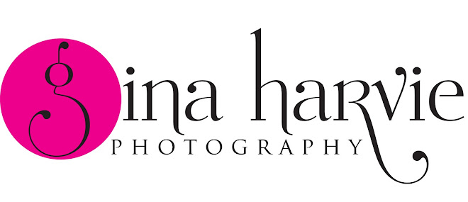 Gina Harvie Photographer