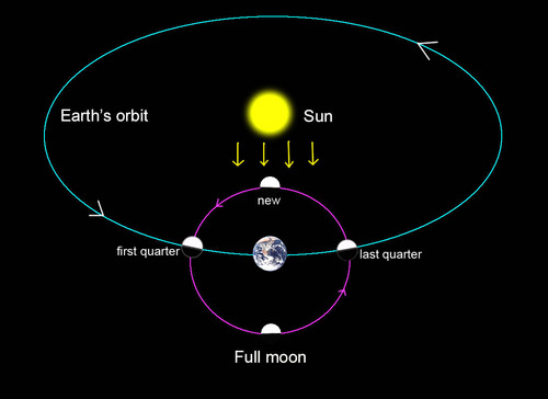 questions about god circled around the scientific revolution The scientific revolution:  the scientific revolution a very short introduction  with the moon in orbit around it the planets however all circled the sun,.