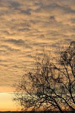 Creamsicle Sky