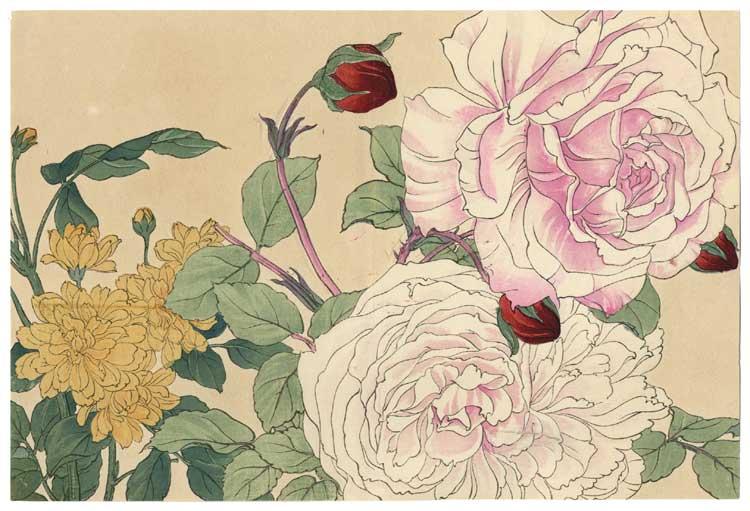 El arte del shibari - 1 3