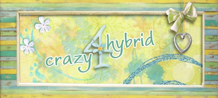 crazy4hybrid