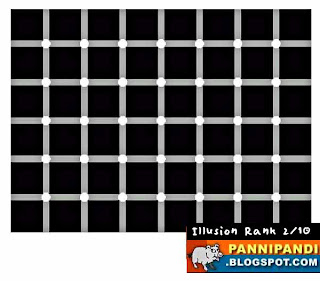 rank 2 of top 10 optical illusions - counting dots