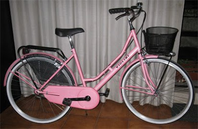 La mia stupenda bicicletta holland rosa