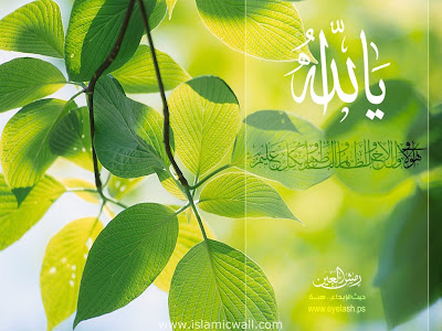 Wallpaper Pemandangan Kaligrafi Allah | Picture Wallpaper - Download