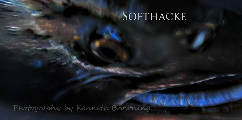 SoftHacke