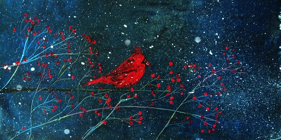 irresistible discoveries a red bird at christmas