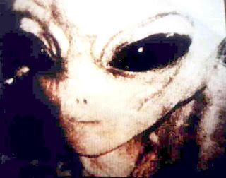 http://4.bp.blogspot.com/_7Bqr1I5gzyk/SOVaqdzHWFI/AAAAAAAABUA/Q4GT9Y15Ip0/s320/disclosure-alien.jpg