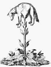 Scythian Lamb
