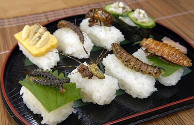 Japanese Weird Food - Insect Sushi Seen On  www.coolpicturegallery.us