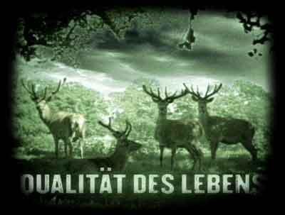 Qualität des Lebens - Laibach