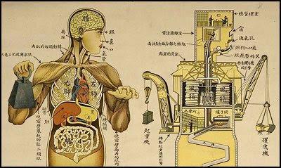 Corpo como máquina