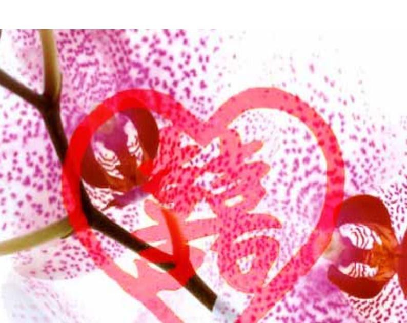 Tips c mo armonizar el amor con feng shui for El arte del feng shui