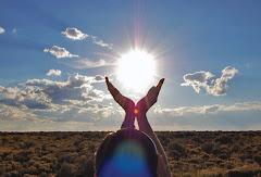 شمس الأمل