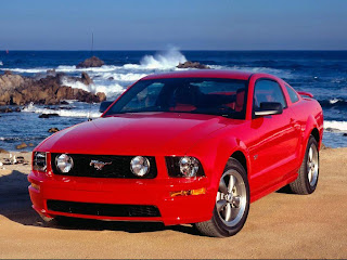 Mustang beach wallpapper