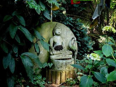 De Magische Tuin : De rijke tuin sunshine for the soul