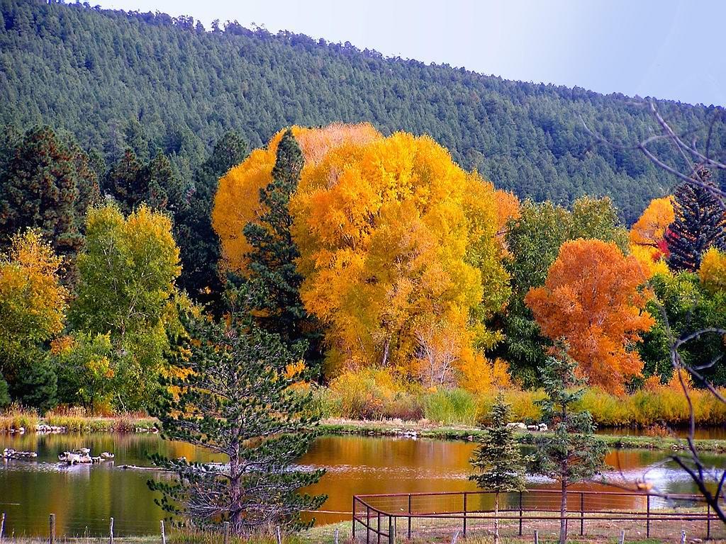 http://4.bp.blogspot.com/_7LKIMcZt0vM/TIEtfvT2D_I/AAAAAAAAAE4/GREvIGjhEzI/s1600/autumn_landscape-1420%5B1%5D.jpg