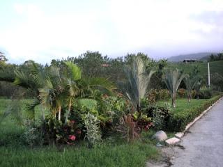Peru, Honduras
