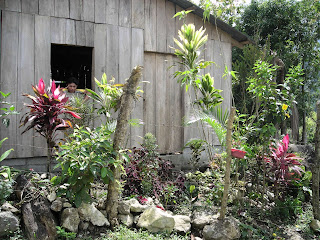 Wood house, Honduras