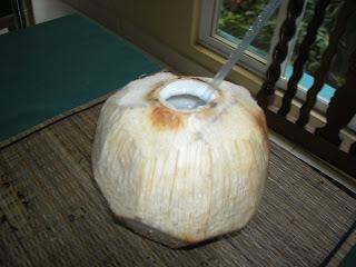 coconut, La Ceiba, Honduras