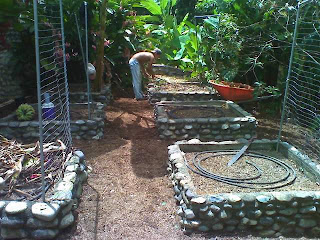 raised vegetable beds, La Ceiba, Honduras