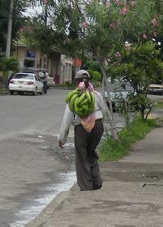 Honduran banana man, La Ceiba, Honduras