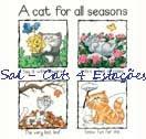 Sal - Cats 4 Estações