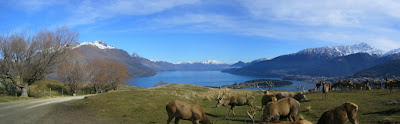 My New Zealand Vacation, Queenstown, Deer Park Heights, Pano145