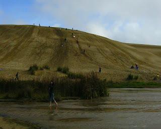 My New Zealand Vacation, Ninety Mile Beach, Giant Sand Dunes, Photo10427