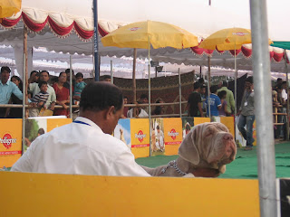 Hycan  India Dog Show
