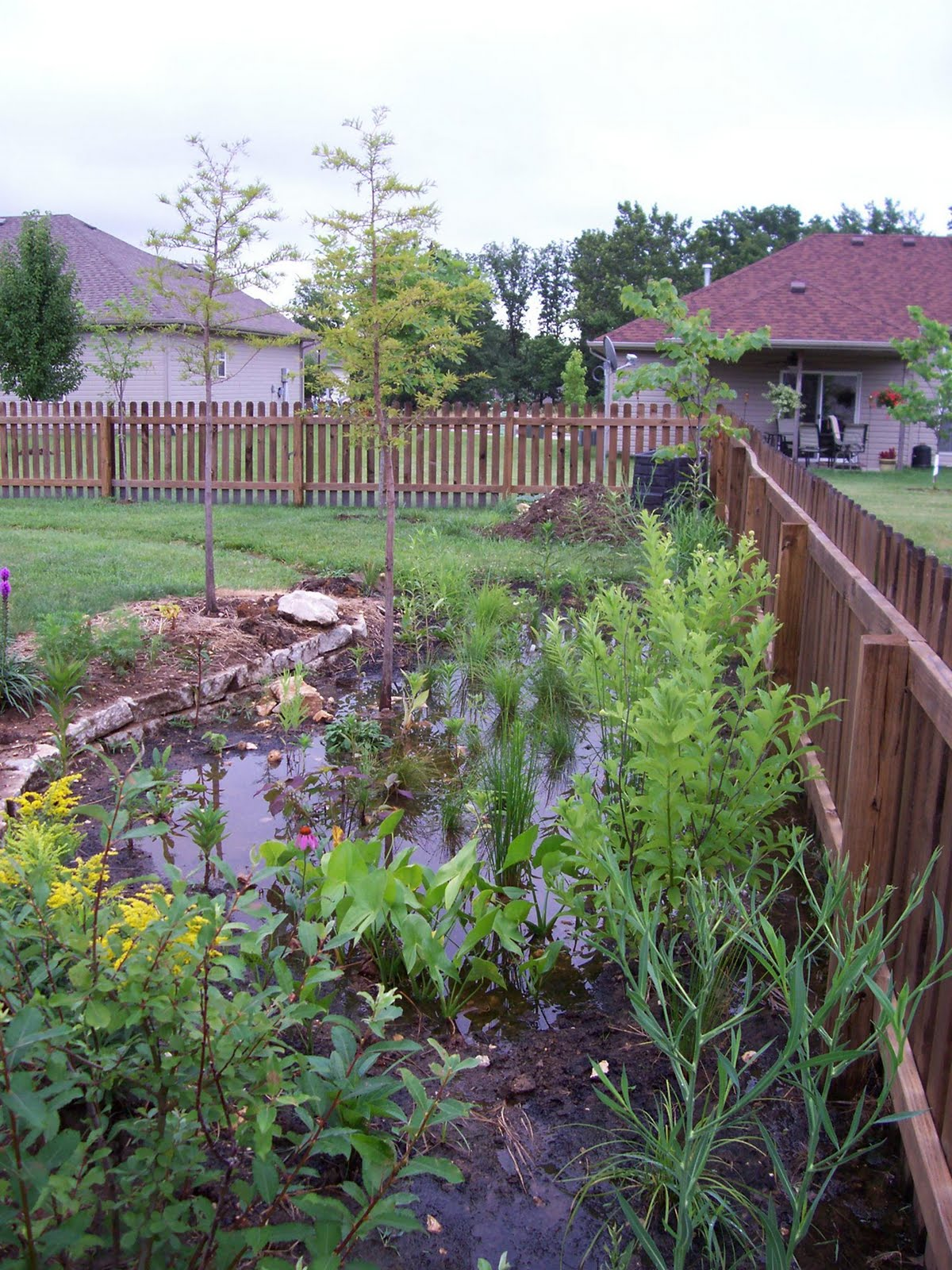 Missouri Clean Water AmeriCorps Blog: Columbia Rain Garden Tour