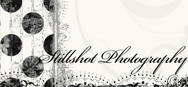 Stillshot Photography
