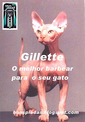 Piada-imagem: Foto de gato sphinx sem pelos é associado à propaganda do barbeador gillette