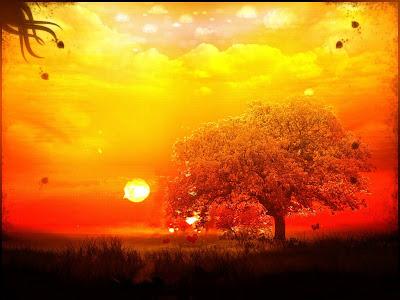 Foto para wallpaper (papel de parede) com por de sol em paisagem de cores saturadas