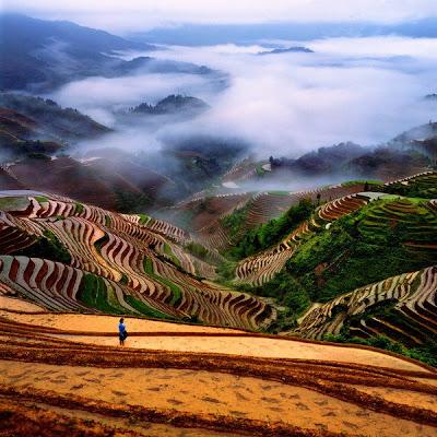 Terraços para plantações na China