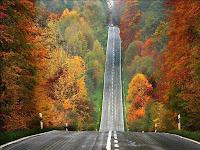 Papel de Parede com imagem de estrada ladeada por árvores da natureza linda no outono.