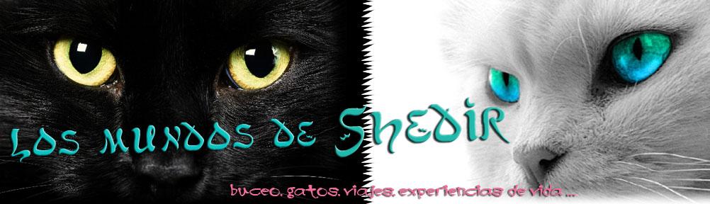 Mundos de Shedir