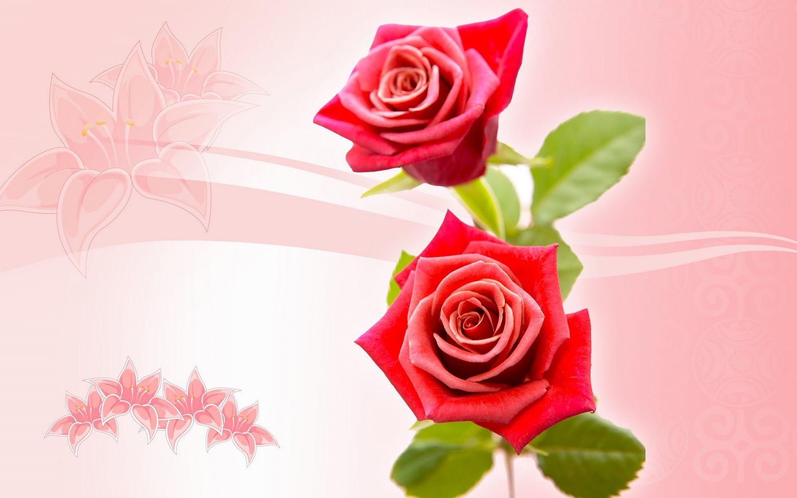 Imagenes Rosas Para El Dia De La Madre}