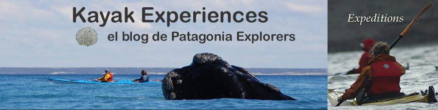 Patagonia Explorers