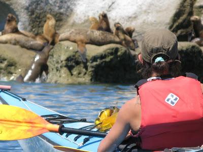 Kayak y Trekking. Temporada de Ballenas. Peninsula Valdes.Daily Outings Sea Kayak y Trekking. Whales Season. Peninsula Valdes