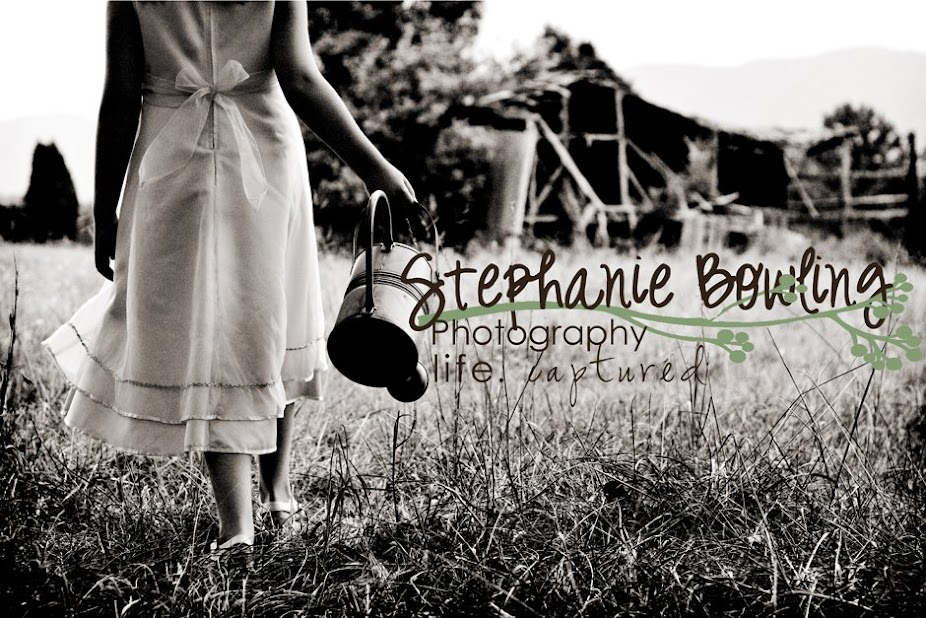Stephanie Bowling Photography