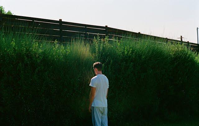 Κυνόδοντας, Photograph