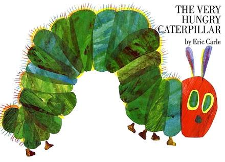 Hungry Caterpillar Butterfly Life Cyclenotebook