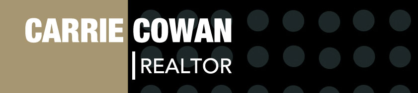 Carrie Cowan, Realtor at RE/MAX State Line