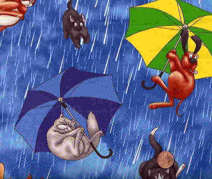 Is It Is Raining Cats And Dogs A Metaphor
