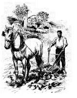 laboureur à cheval et charrue